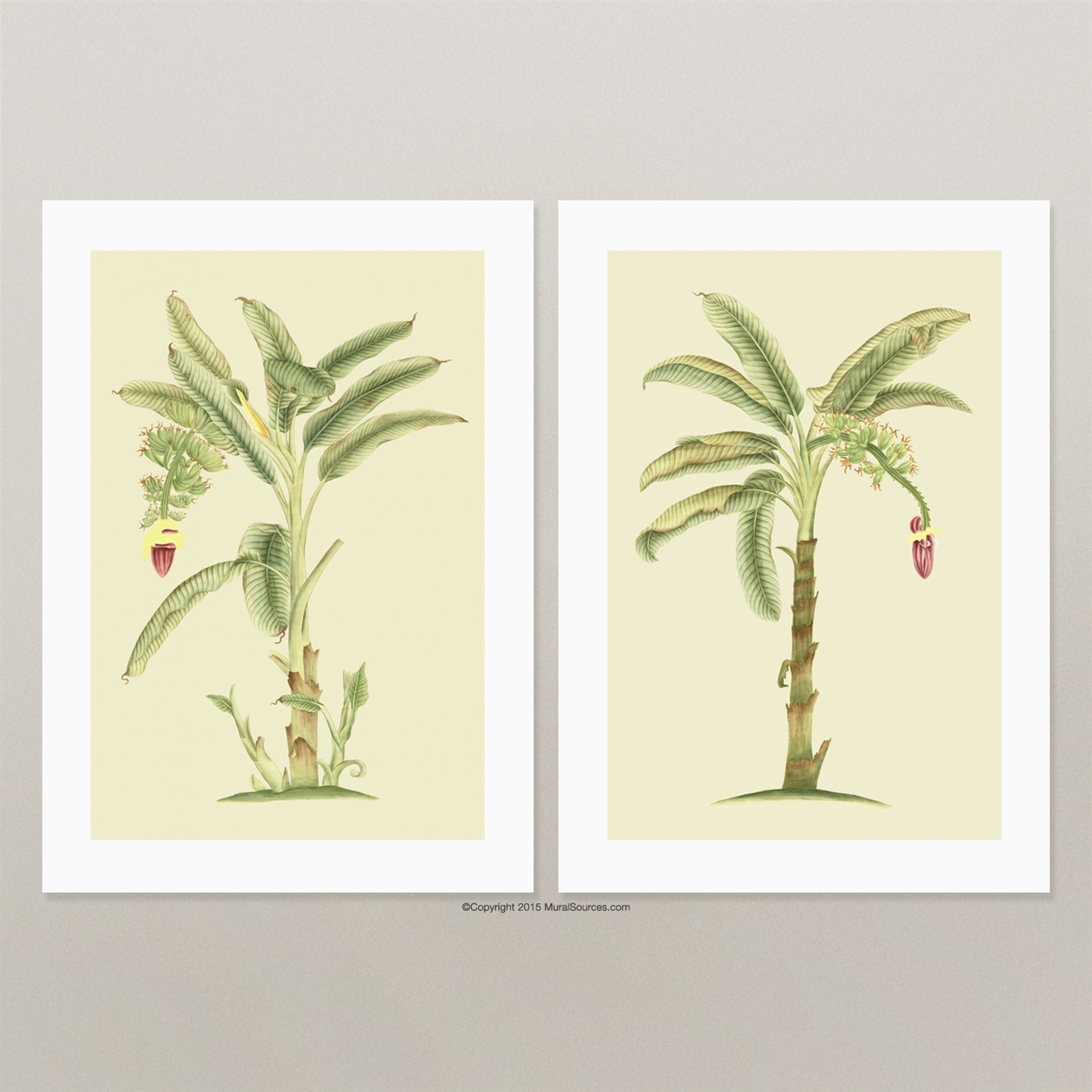 banana tree prints for framing