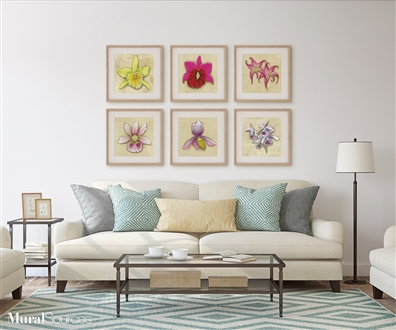 Orchid flower prints for framing